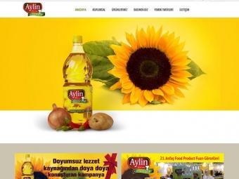 aylinyaglari.com.tr
